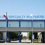 Solvay начала производство подсушенной биомассы