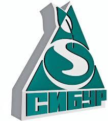 Прибыль «Сибура» в 2013 году составила 269,8 млрд рублей